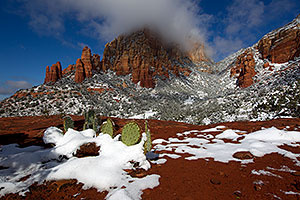 Morning snow view of Prickly Pear Cactus and Thunder Mountain (Capital Butte) in Sedona