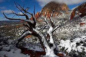 Morning snow view of Thunder Mountain (Capital Butte) in Sedona