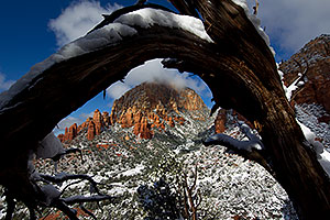 Morning snow view of Thunder Mountain (Capital Butte) through a tree arch in Sedona