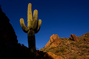 Late afternoon in Superstitions