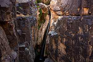 Darwin Falls in Death Valley