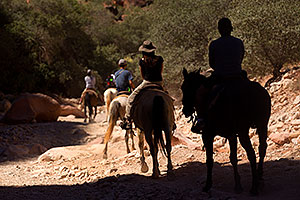 Shadow rider and others along Havasupai Trail