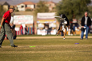 Jumping dogs of Hot Dogs Club at Lake Havasu Balloon Fest