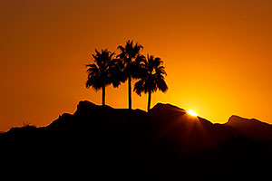 Sunrise in Lake Havasu City, Arizona