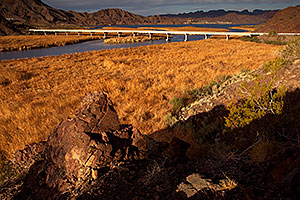 Bill Williams River at Lake Havasu