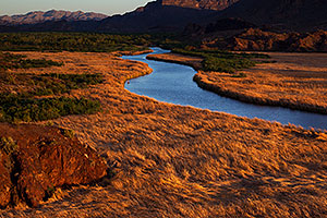 Evening at Bill Williams River at Lake Havasu