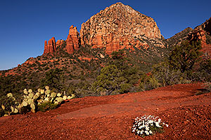 Thunder Mountain in Sedona