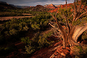 View by Cathedral Rock in Sedona