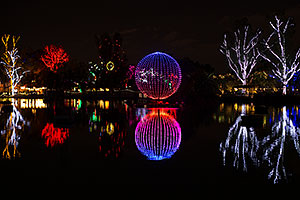 Phoenix Zoo Lights