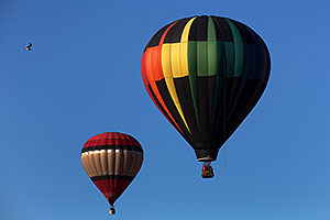 Balloons at Lake Havasu Balloon Fest