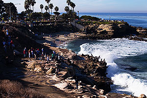 View of coast of La Jolla, California