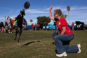Frisbee dog Sami at Lake Havasu Balloon Fest