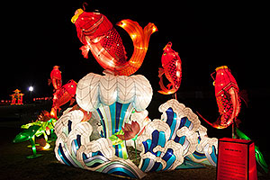 Fish at Chinese New Year Lantern Culture and Arts Festival 2014