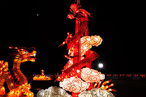 Dragons at Chinese New Year Lantern Culture and Arts Festival 2014