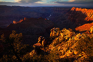 Evening in Grand Canyon