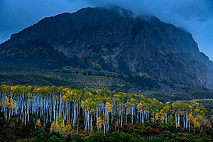 Fall colors at Kebler Pass, Colorado