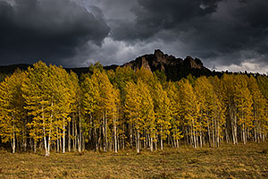 Fall colors at Owl Creek Pass, Colorado