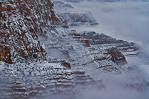 Snow and fog at Grand Canyon