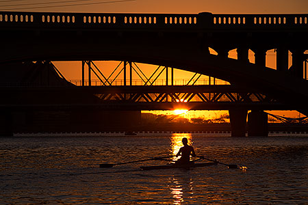 Rowers at Tempe Town Lake