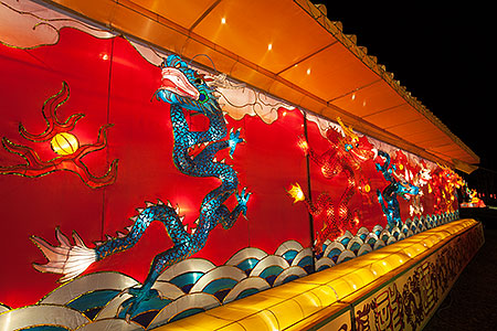 Dragon wall at Chinese New Year Lantern Culture and Arts Festival 2014