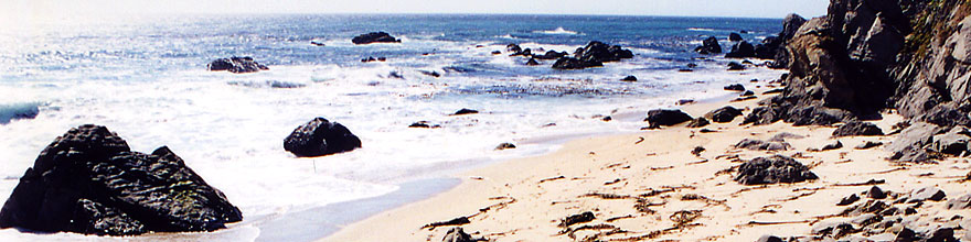 /images/500/2001-07-cali-bigsur-beach-sp.jpg - #00794: Images of Big Sur ?~@? July 2001 -- Big Sur, California