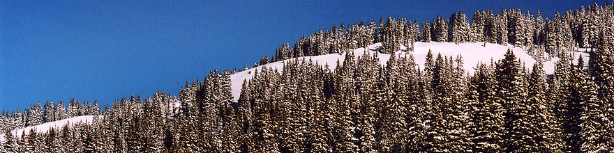 /images/500/2005-03-wolfcreek-top-t2-sp.jpg - #02582: March at Wolf Creek Pass … March 2005 -- Wolf Creek Pass, Colorado