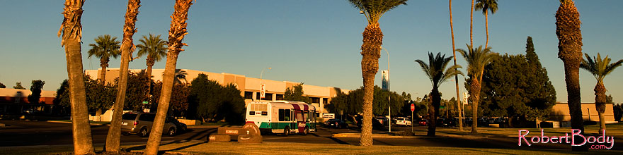 /images/500/2008-12-09-tempe-kiwanis-palms-60978sp.jpg - #06392: Metro bus and traffic at Kiwanis Park … December 2008 -- Kiwanis Park, Tempe, Arizona