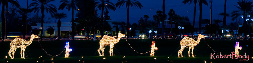 /images/500/2008-12-14-mesa-temple-caravan-64040sp.jpg - #06453: Camel Caravan - Mesa Temple Garden Christmas Lights Display … December 2008 -- Mesa Arizona Temple, Mesa, Arizona