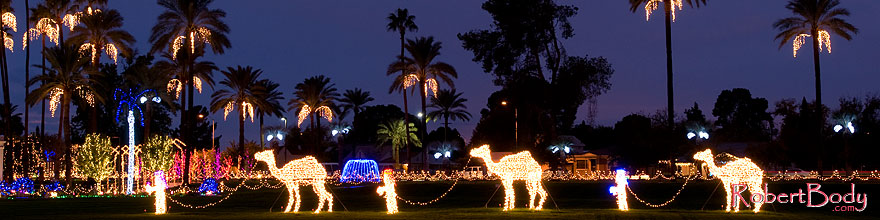 /images/500/2008-12-15-mesa-temple-caravan-64183sp.jpg - #06466: Mesa Temple Garden Christmas Lights Display … December 2008 -- Mesa Arizona Temple, Mesa, Arizona
