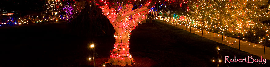 /images/500/2008-12-29-mesa-temple-night-69390sp.jpg - #06662: Christmas decorations by Mesa Arizona Temple … December 2008 -- Mesa Arizona Temple, Mesa, Arizona