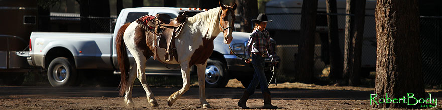 /images/500/2010-06-05-naha-horses-1061sp.jpg - #08077: Morning at NAHA Horseback riding event in Flagstaff … June 2010 -- Fort Tuthill County Park, Flagstaff, Arizona