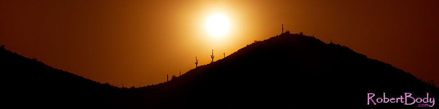 /images/500/2011-05-12-supers-2cactus-68200-sp.jpg - #09167: Sunset in Superstitions … May 2011 -- Superstitions, Arizona