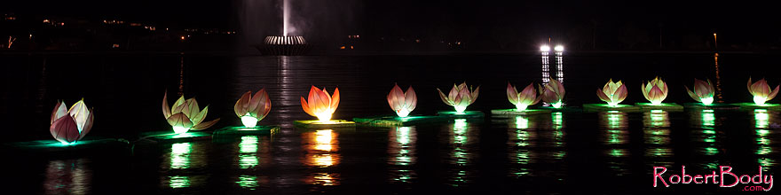 /images/500/2014-02-09-fhills-chin-lill-5d2_3203sp.jpg - #11768: Water Lillies at Chinese New Year Lantern Culture and Arts Festival 2014 … February 2014 -- Fountain Hills, Arizona
